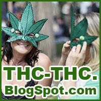 blog spot, o marihuanie, cannabis newsy, artyku³y, thc-thc