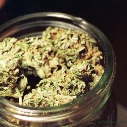 marihuana-53662