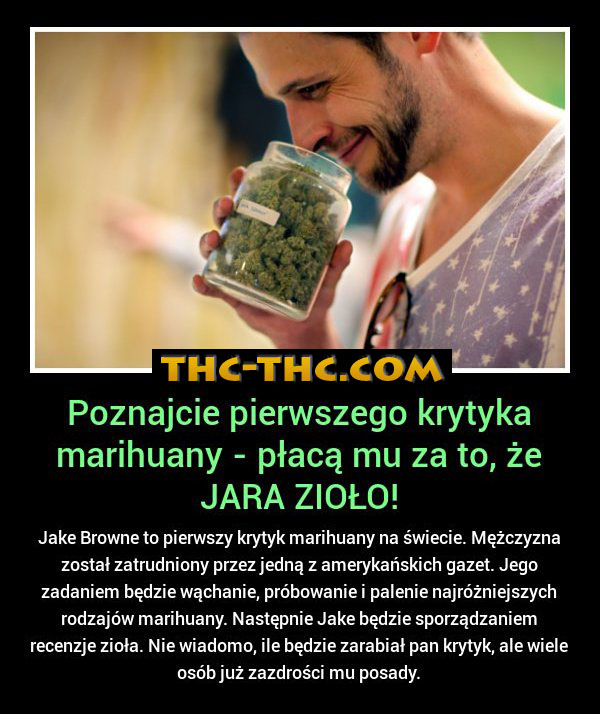 degustator-marihuany-09223