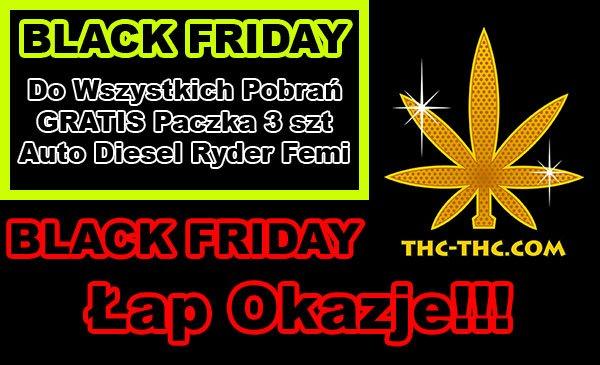 black friday, nasiona marihuany, nasiona konopi