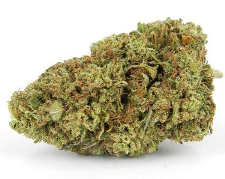 Nasiona konopi, Nasiona marihuany, Odmiana, Odmiany, Recenzja, Auto, Blackberry Kush