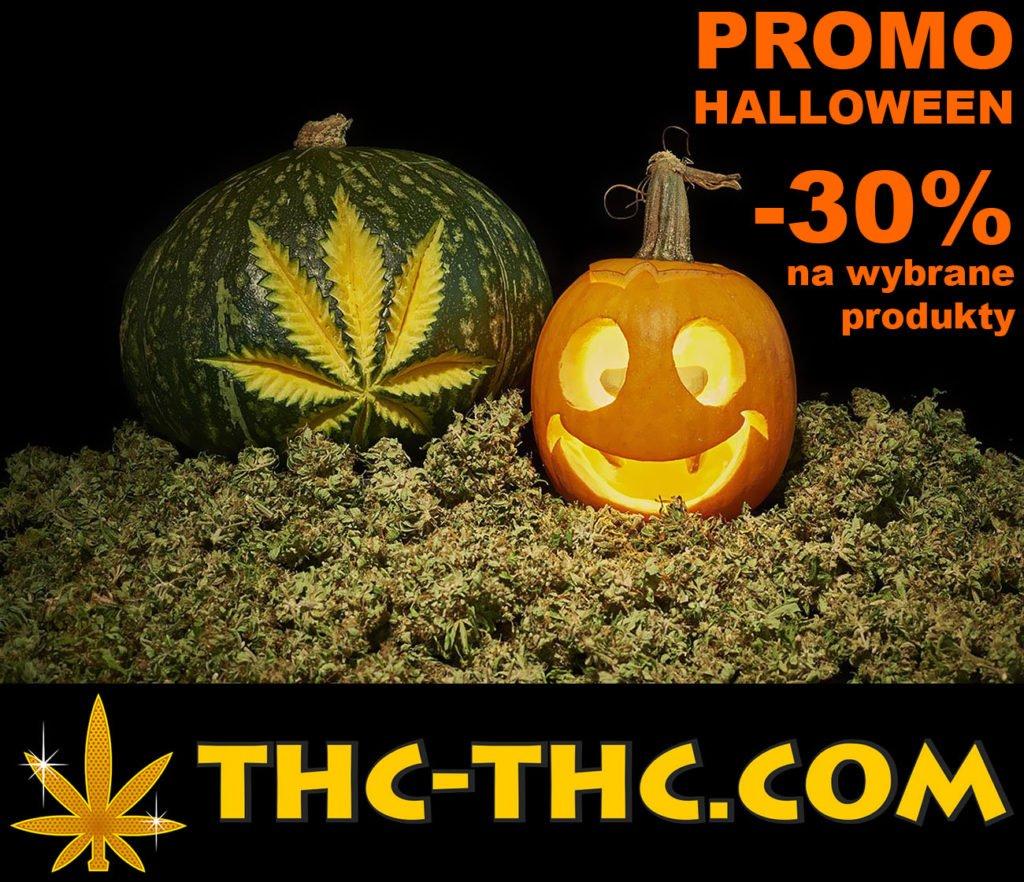 Halloween, Promocje, Promo, Promocji 1+1, Ak472, Green AK XL Automatic, Zambeza Seeds, Automatic, Akseeds, Autofloweringiem, Autoflowering