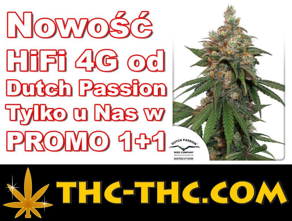 Promocji 1+1, Dutch Passion, HiFi 4G, Feminizowane, Nasiona Marihuany, Nasiona Konopi, Nasion, Indoor, Outdoor, Pełno Sezonowe, Pełnosezonowe