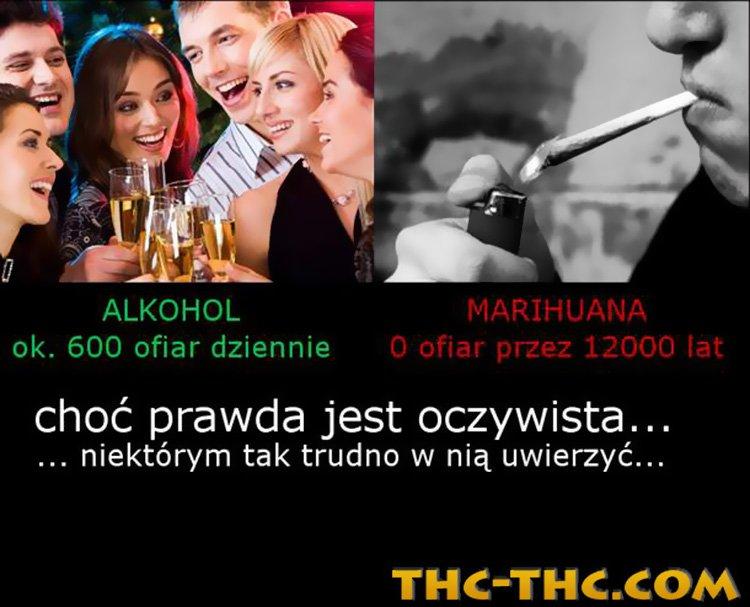 Marihuana vs Alkohol