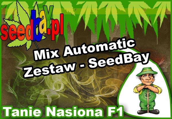 nasiona marihuany, nasiona konopi, feminizowane, mix, automatic, seedbay