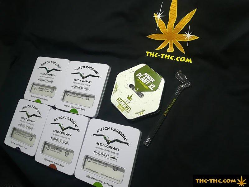 Nasiona Marihuany, Nasiona Konopi, THC Sklep, Zastosowanie