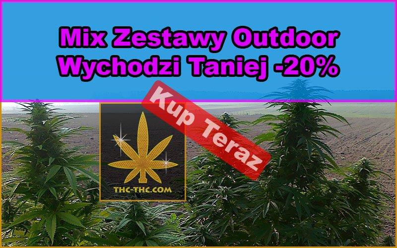 nasiona marihuany, nasiona konopi, mix, zestawy, outdoor