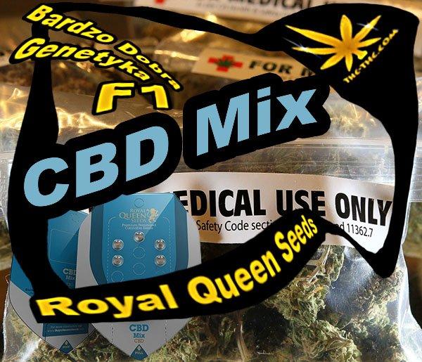nasiona marihuany, nasiona konopi, cbd, mix, royal queen seeds