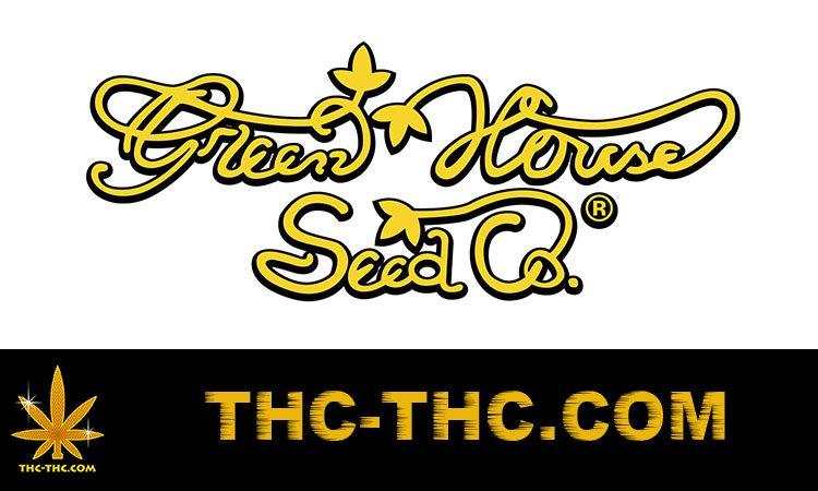 nasiona marihuany, nasiona konopi, feminizowane, producent, green house