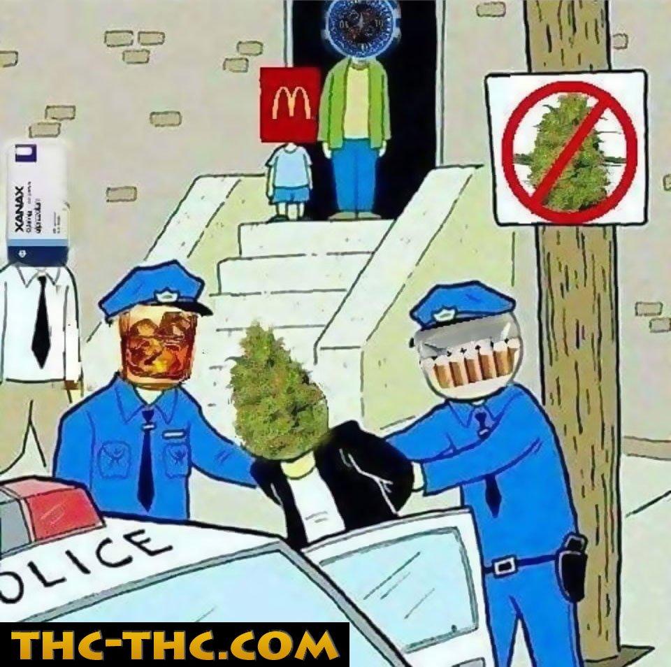 legalne, leki, alkohol, papierosy, fast foody