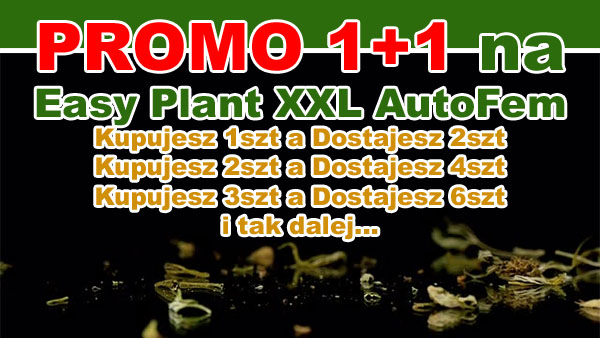 nasiona marihuany, easy plant xxl, promocja 1 plus 1, gratis