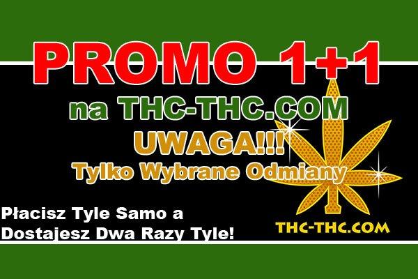 nasiona marihuany, nasiona konopi, dwa, razy tyle, 1 plus 1, promocja