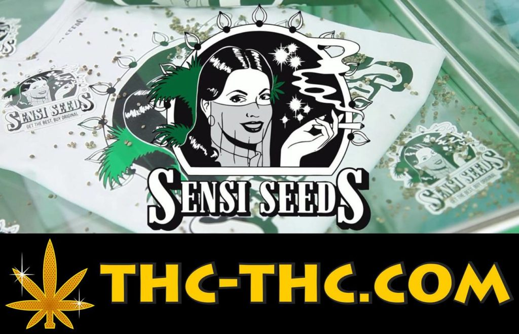 Sensi Seeds, Nasiona Marihuany, Nasiona Konopi, Sklep, Sklepie, THC-THC, Oferta, SeedBank, Seed-Bank