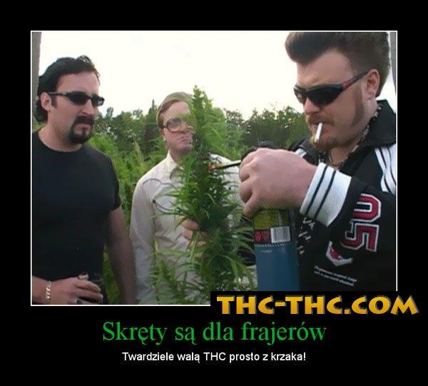 Palenie, Marihuany, Prosto, Krzaka